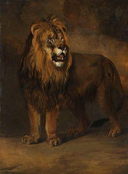 Ein Löwe aus der Menagerie von König Louis Napoleon, 1808, Pieter Gerardus van Os