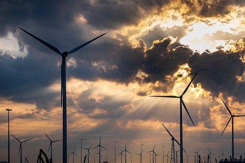Windturbine park in de Eemshaven