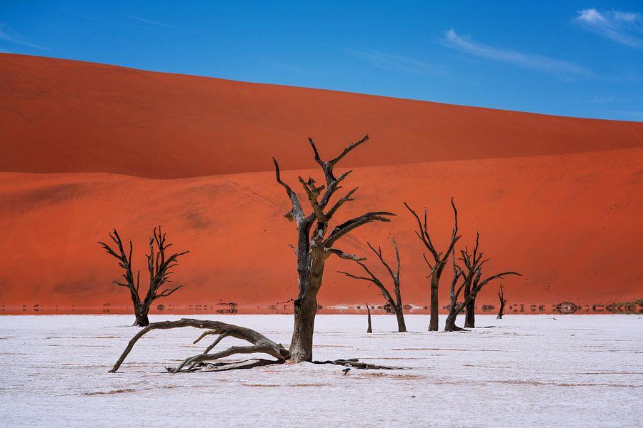 Deadvlei, Namibië van Reinier Snijders