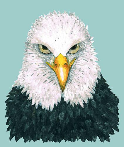 Een portret van een Amerikaanse zeearend