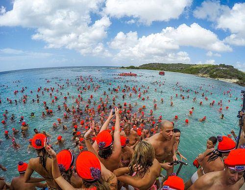 Nieuwjaarsduik UNOX Curaçao van
