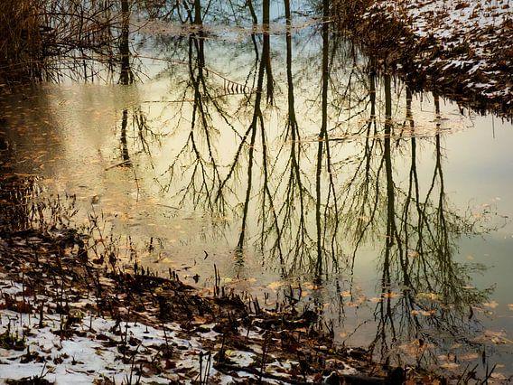 Herfstwinter in het water