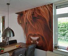 Klantfoto: Portret Schotse Hooglander 2 van Sandra van Kampen
