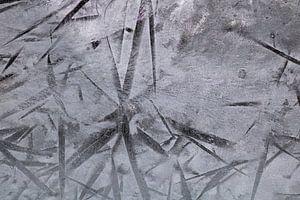 IJsbloemen op de ruiten van Wendy de Waal