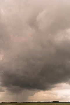 Regenbui over Het Zwin von Edwin van Amstel