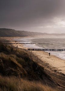 Windy Days von Thom Brouwer