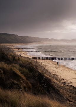 Windy Days van Thom Brouwer