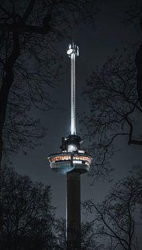 Euromast Rotterdam in de nacht tussen de bomen van vedar cvetanovic