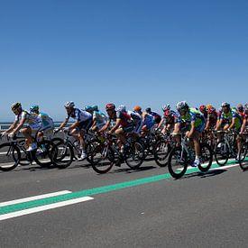 de Tour de France in Zeeland van Desiree Meulemans