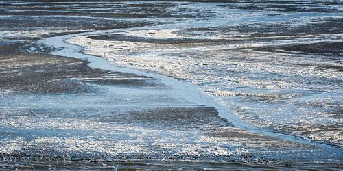 Waddenzee Het Wad