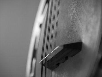 Detail Banjo Mandoline van Martijn Wit
