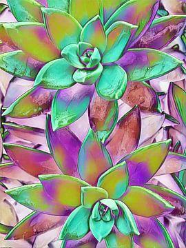Wild Succulents van John Velez