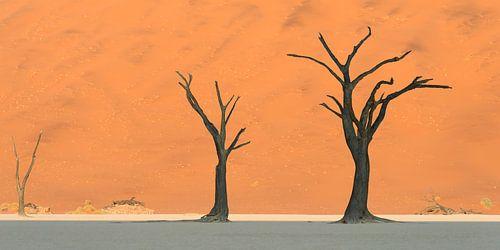 the three trees van Aline van Weert