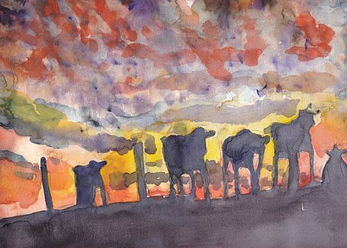 Koeien in de avondzon
