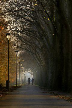 Boslaantje in herfsttinten met mist van Willian Goedhart
