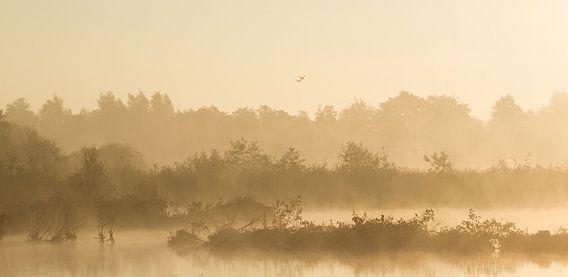 Mist over veenplassen van Robert van Iperen
