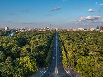 Berlin-Panorama mit Tiergarten von Ruurd Dankloff