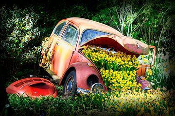 Kever - volkswagen - zoals hij ooit was ! van Marly De Kok
