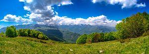 Panorama foto van de groene bergen in de Italiaanse alpen