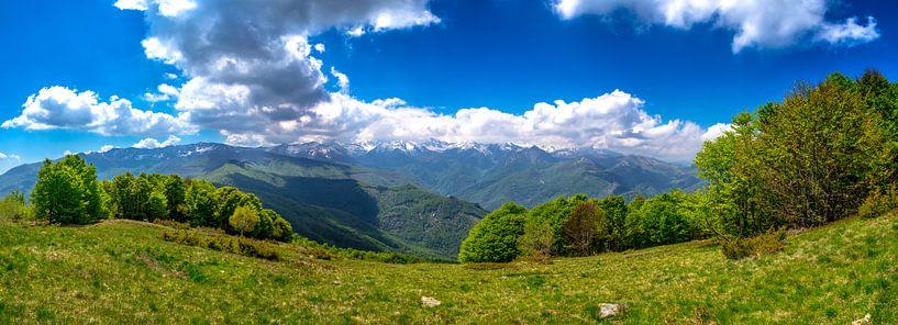 Panorama foto van de groene bergen in de Italiaanse alpen van Björn Jeurgens