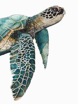 Große Meeresschildkröte, Jodi Hatfiled  von PI Creative Art