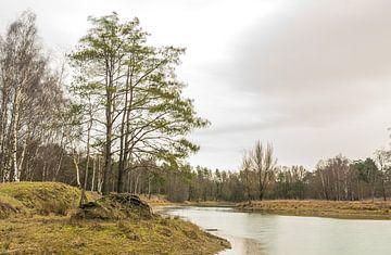 Landschap van Stormweer in Dorst, in Nederland. van Enrique De Corral