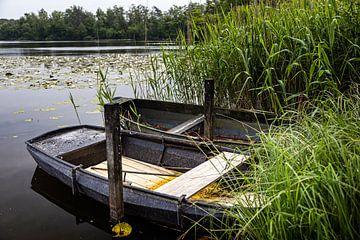 Ruderboote im Schilf Kolkven Oisterwijk von Carin IJpelaar