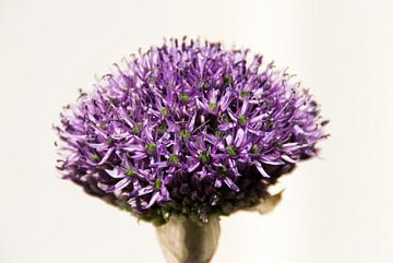 Bloem van bloemetjes van Big Vissie
