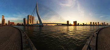Rotterdamse skyline met Erasmusbrug