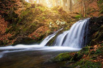 Prießnitzer Wasserfall von Sergej Nickel