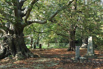Begraafplaats Groenesteeg Leiden van Carel van der Lippe