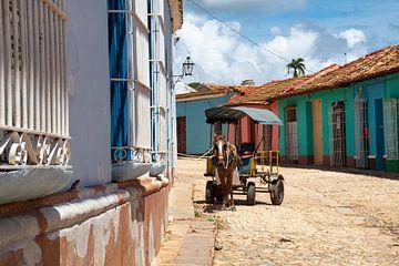 Pferd und Kutsche in Trinidad von Tom Hengst