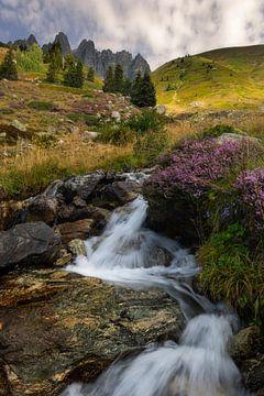 Wunderschöner Wasserfall mit violettem Heidekraut und Blumen in den französischen Alpen. von Jos Pannekoek