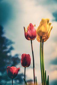 flower power van Jakob Baranowski - Off World Jack
