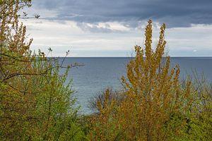 Landscape on the Baltic Sea coast