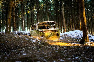 Gestrand in het bos van