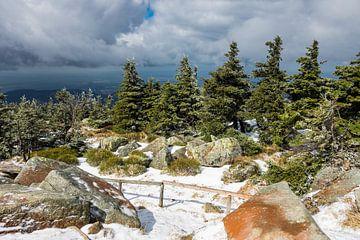 Landschaft mit Schnee auf dem Brocken im Harz von Rico Ködder