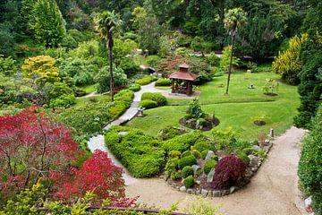 Japanse tuin in Powerscourt Gardens sur Eddo Kloosterman