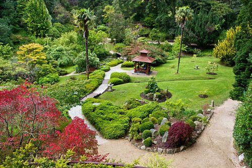 Japanse tuin in Powerscourt Gardens van