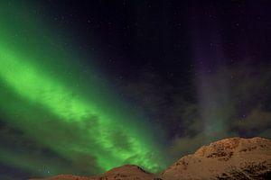 Nordlicht am Balsfjord, Norwegen von Ingrid van Wolferen