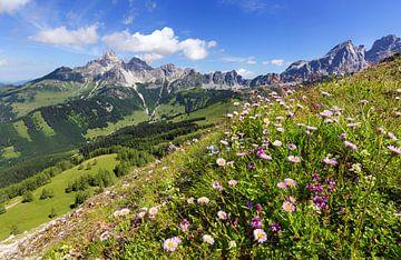 Berglandschap in de lente van Coen Weesjes
