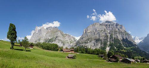 Grindelwald van
