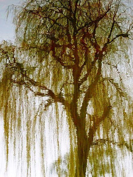 Tree Magic 73 van MoArt (Maurice Heuts)