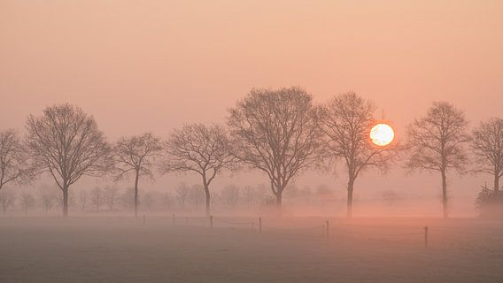 Zonsopkomst / Sunset van Elles Rijsdijk