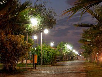 Boulevard bij nacht van P van Beek