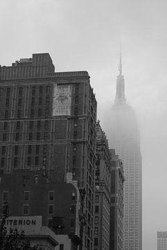 New York in het oog van de storm van Cathy Janssens
