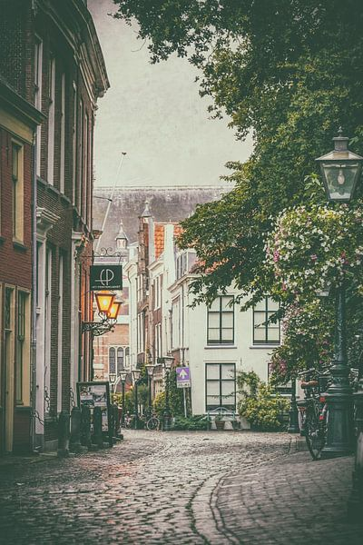 Kloksteeg Leiden van Dirk van Egmond