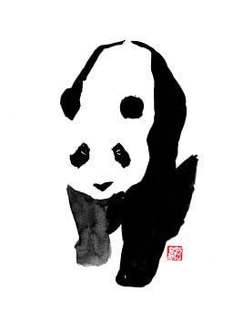 Panda 03 von philippe imbert