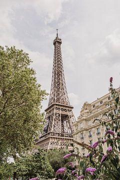 Eiffel Toren Parijs Frankrijk