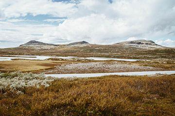 Buntes Norwegen von Anneloes van Acht